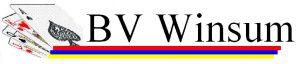 B.V. Winsum logo